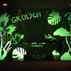 Grolsch fait son Show<br>